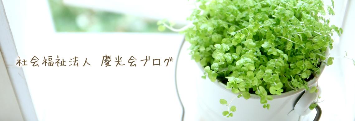 社会福祉法人 慶光会ブログ
